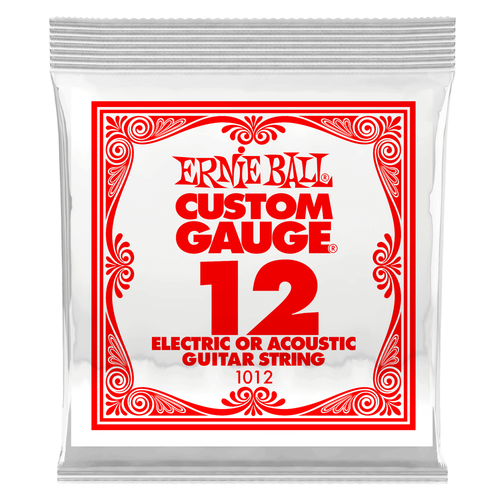 Ernie Ball .012 Plain Steel Electric or Acoustic Guitar String