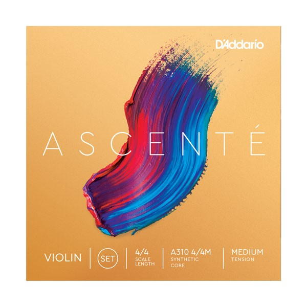 Ascente Violin Set (Medium) - 4/4 Size